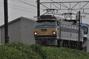 Dsc_1094