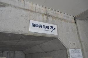 Dsc_8184