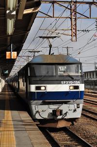 Dsc_8622