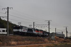 Csc_9923